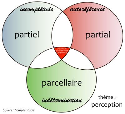 perception-02