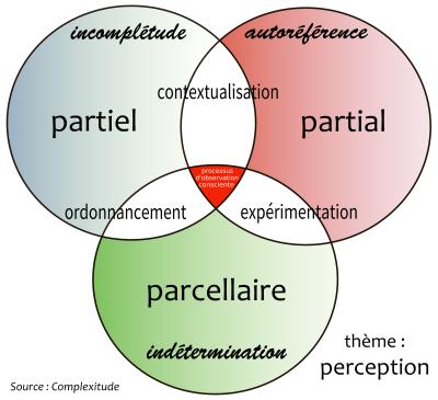 perception-03